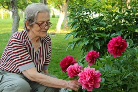 Home Care San Diego a senior is outside tending to her garden